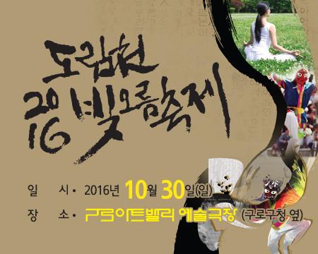 2016 도림천 빛오름 축제